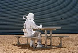 Haz mat suit - picnic table