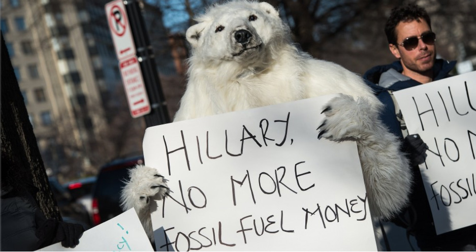 Anti-Hillary Polar Bear