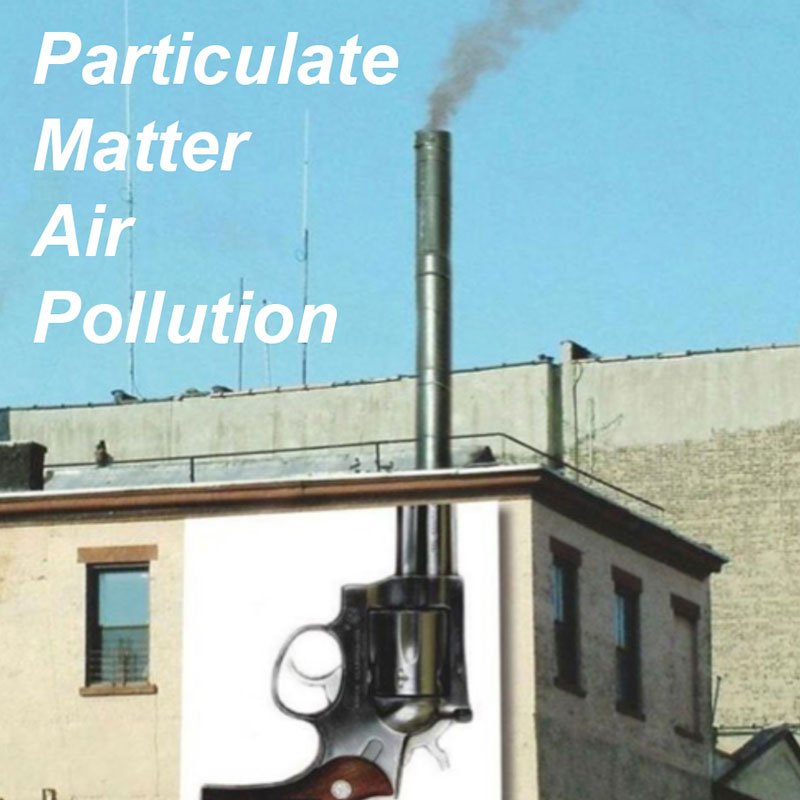 Particulate Matter Air Pollution